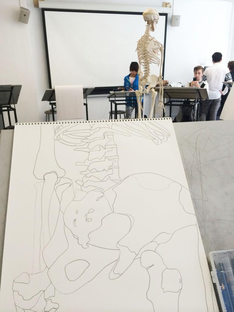 Skeleton WIP