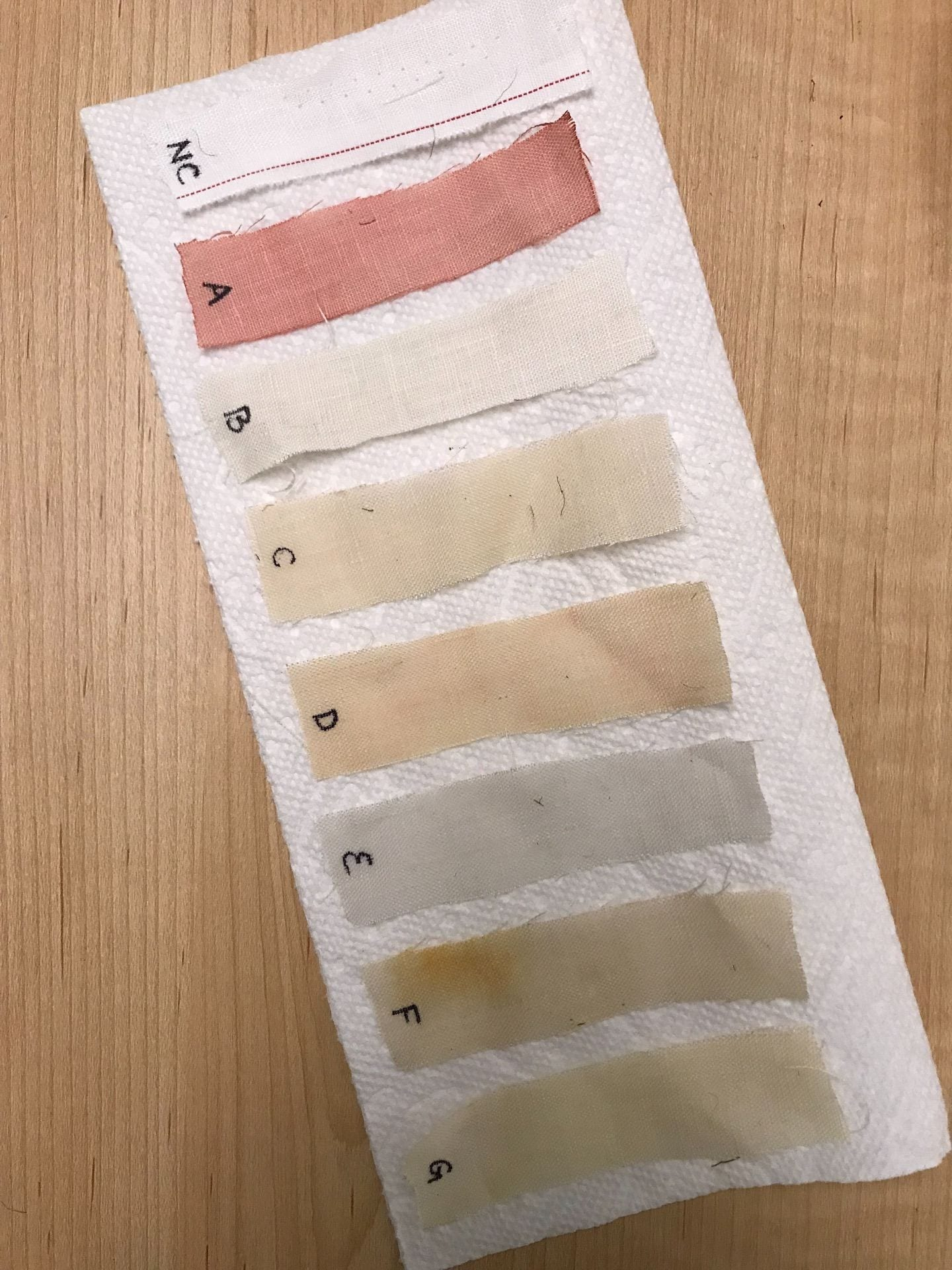 Natural Dye Experiment