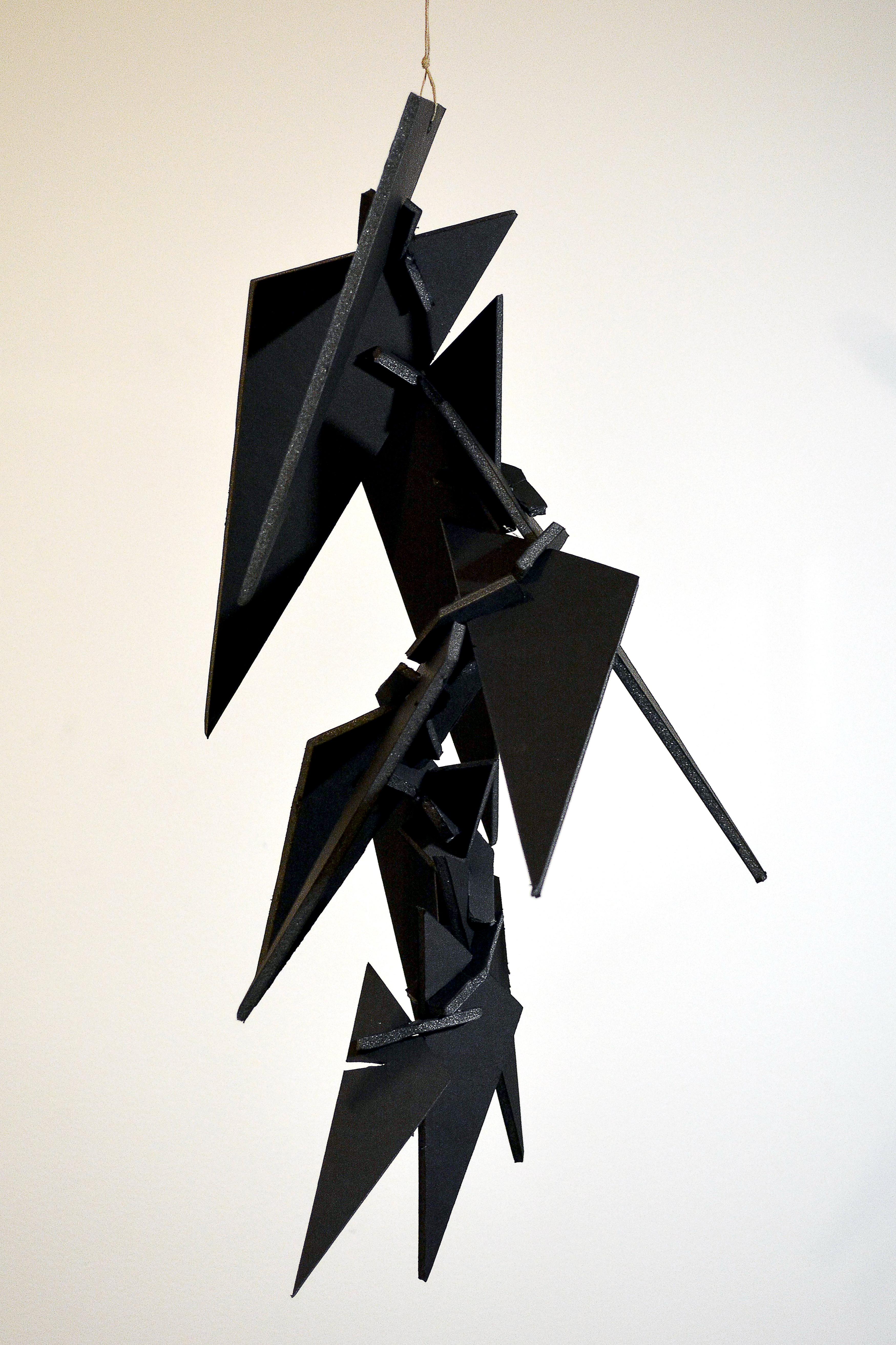 Mini Assignment Foam Core Planar Sculptures