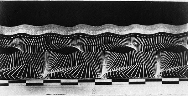 Étienne-Jules Marey – Photography, Motion and Time