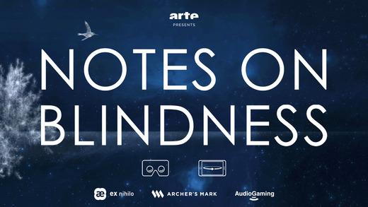 Notes on Blindness VR