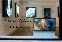 EXHIBITION: FORAYS / OPTIMISM BY FIELD
