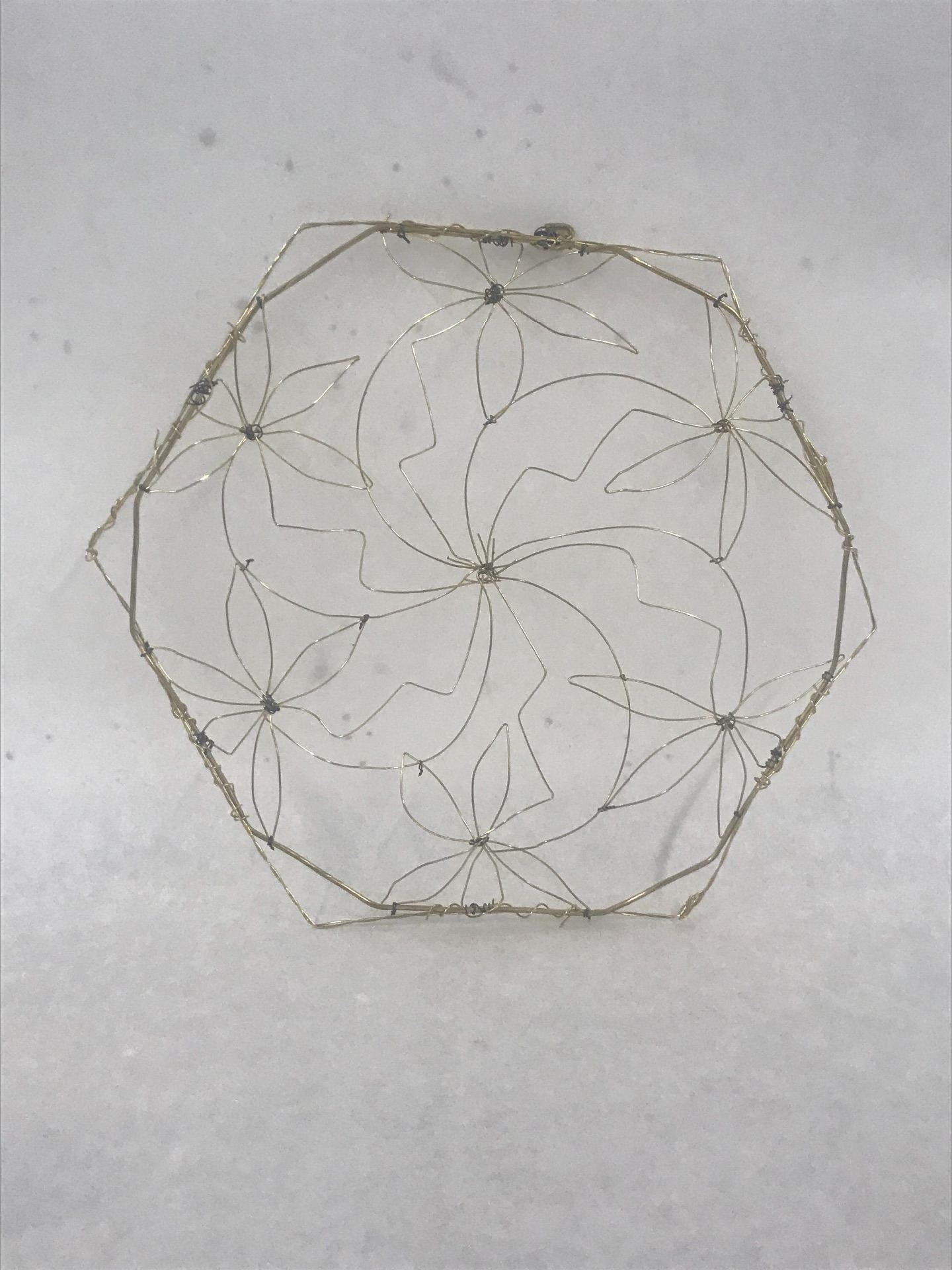 Wire Hexagonal Form