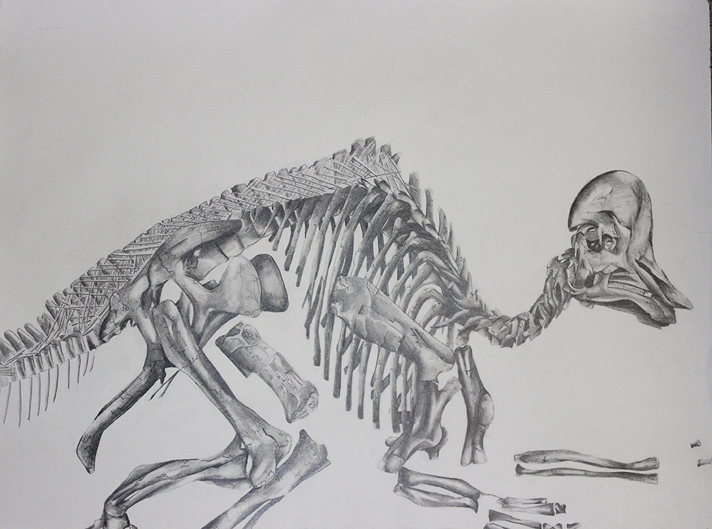 Drawing Post 1