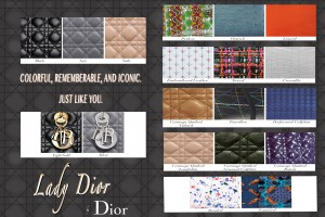 Dior Infographic g