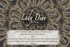 Dior infographic b