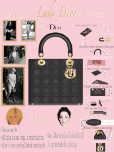 Lady Dior Infographic