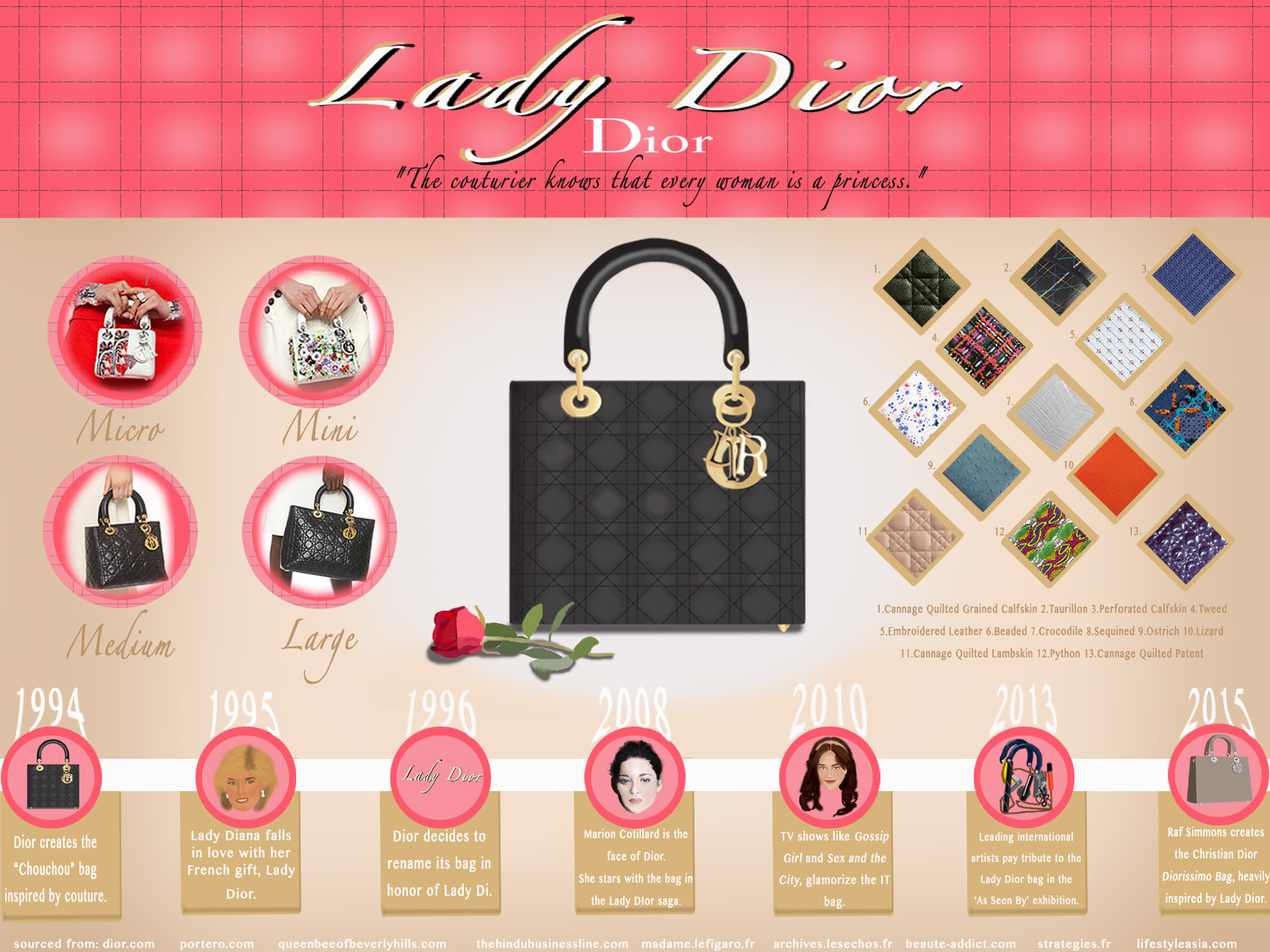 Lady Dior FINAL INFOGRAPHIC