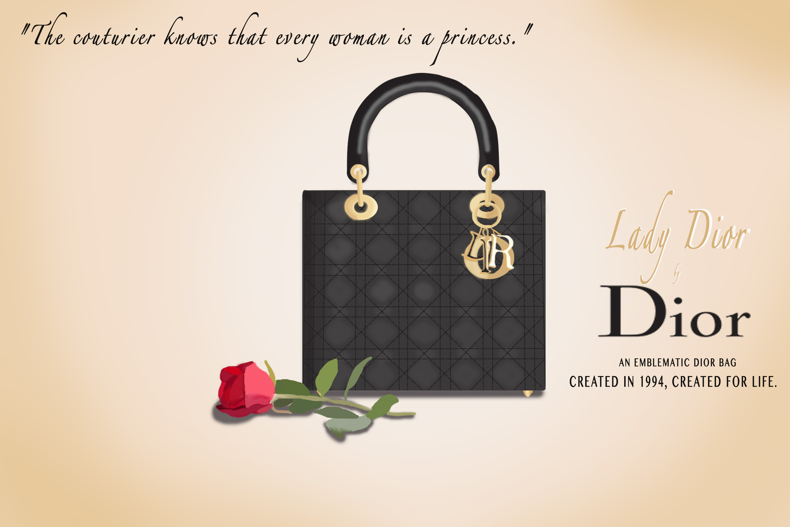 Bridge 3: Lady Dior Infographic Ad Campaign