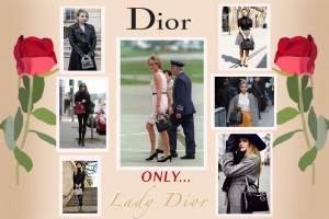 dior infographic h