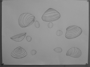 Honore, Sandy Eggs and Shells