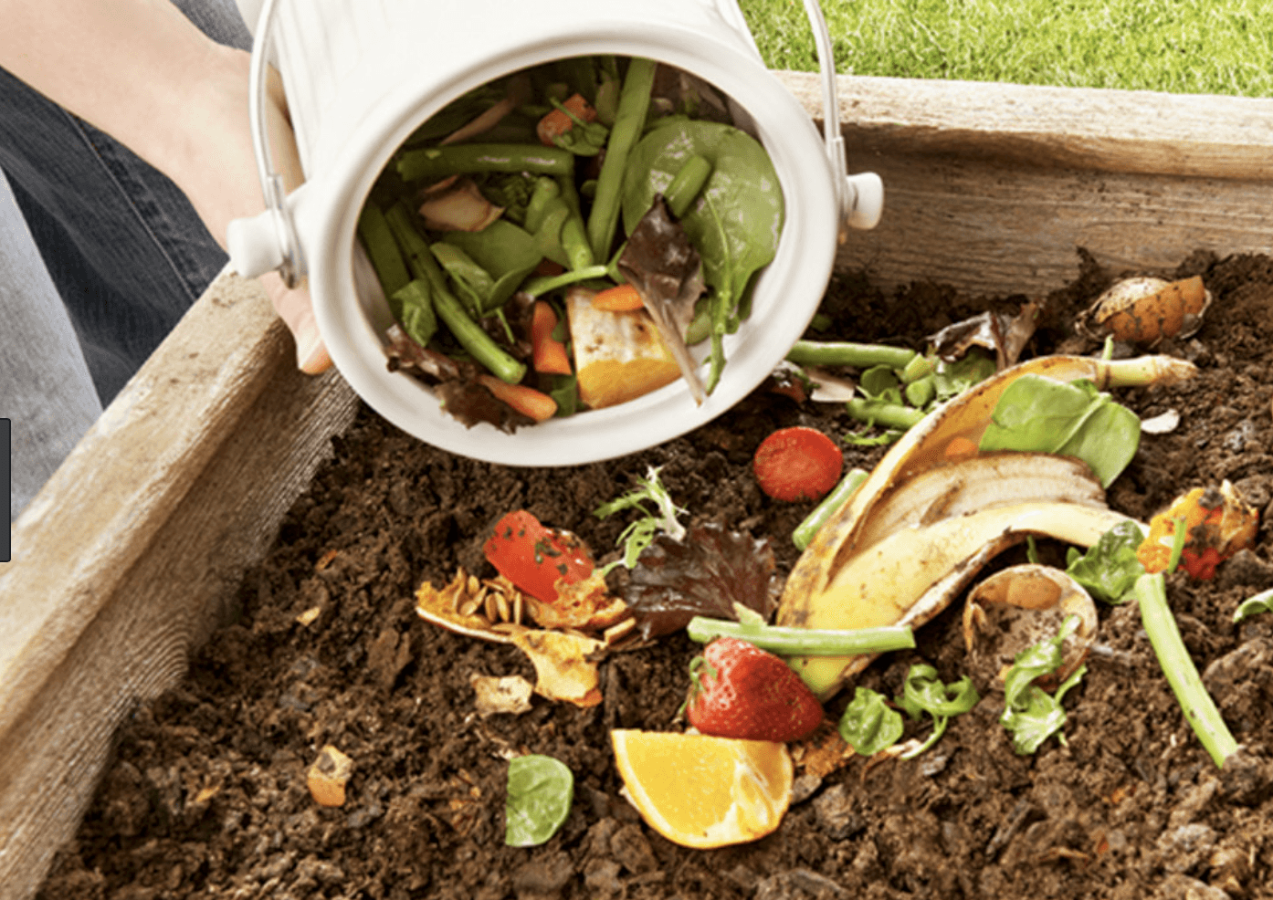 Response to The Compost King of New York
