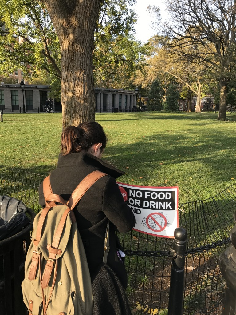 No Food or Drink Sign being placed