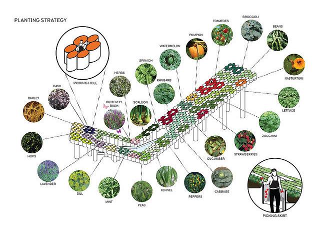 Public Farm 1