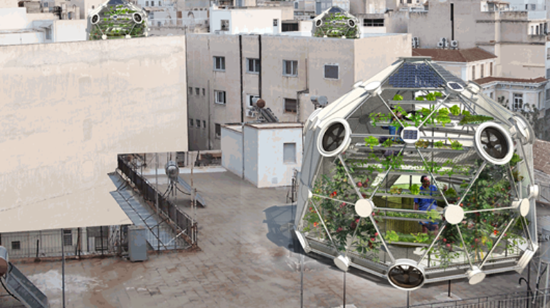 Globe / Hedron a Rooftop Farm