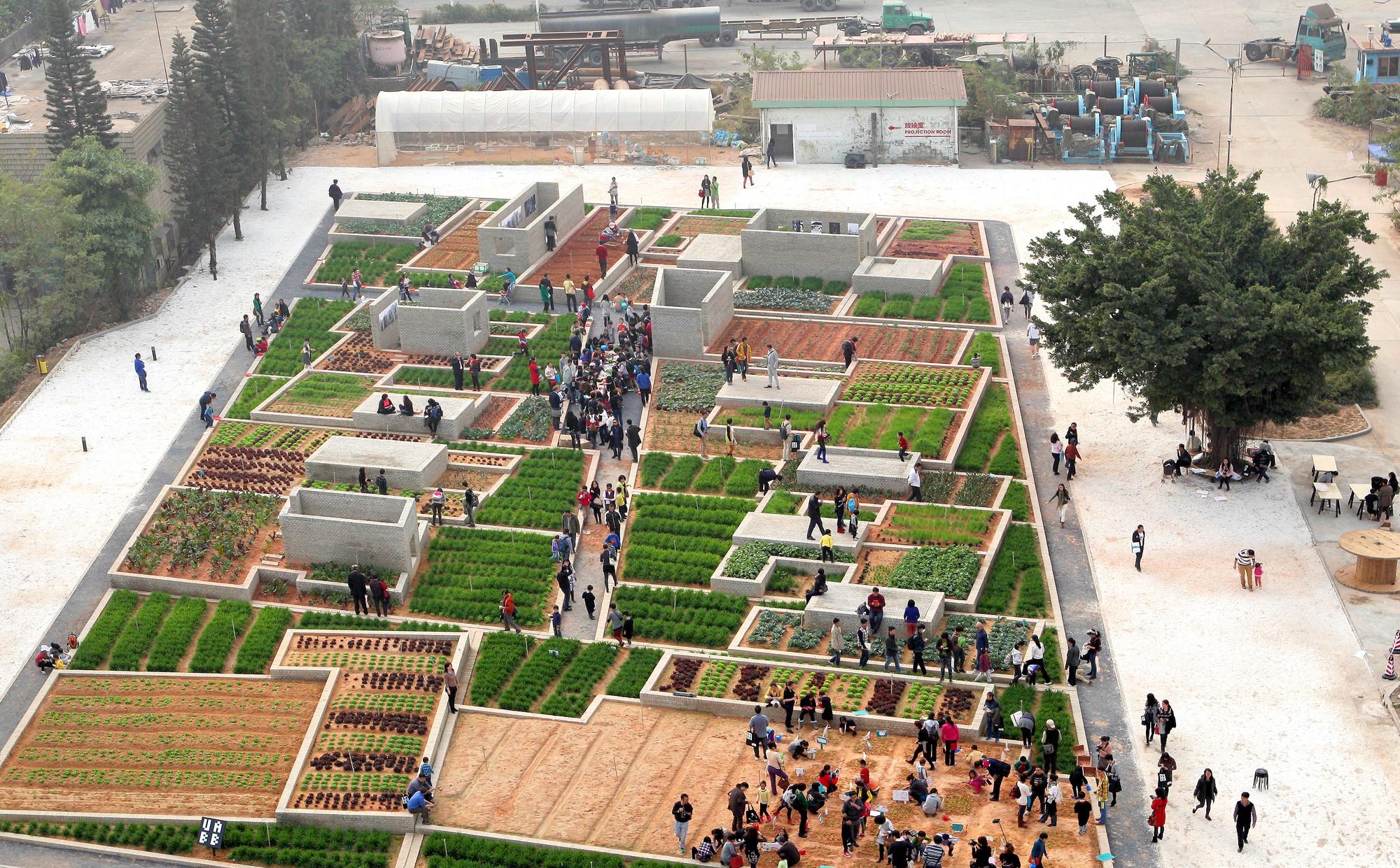Value Farm