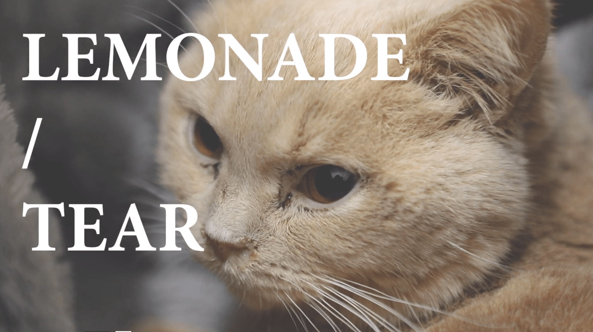 Time Project 3–Lemonade/Tear