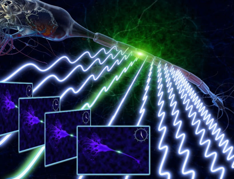 Fast Fluorescence Imaging using Radiofrequency-tagged Emission