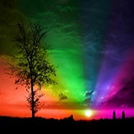 Dispersive Fourier-Transform Spectroscopy