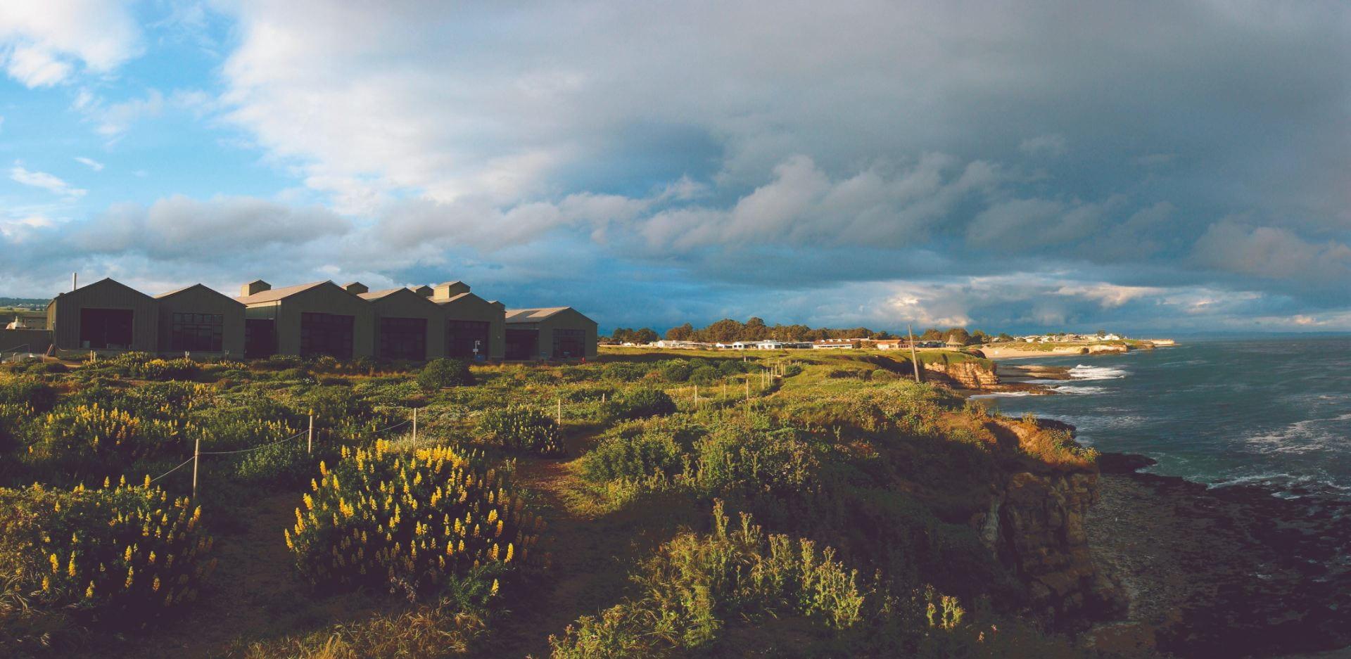 Native landscape surroundings