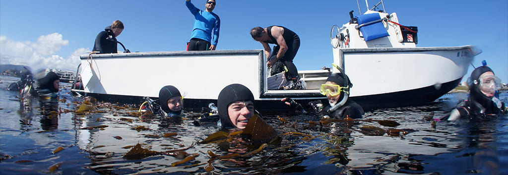 Scientific Diving & Boating Safety Program