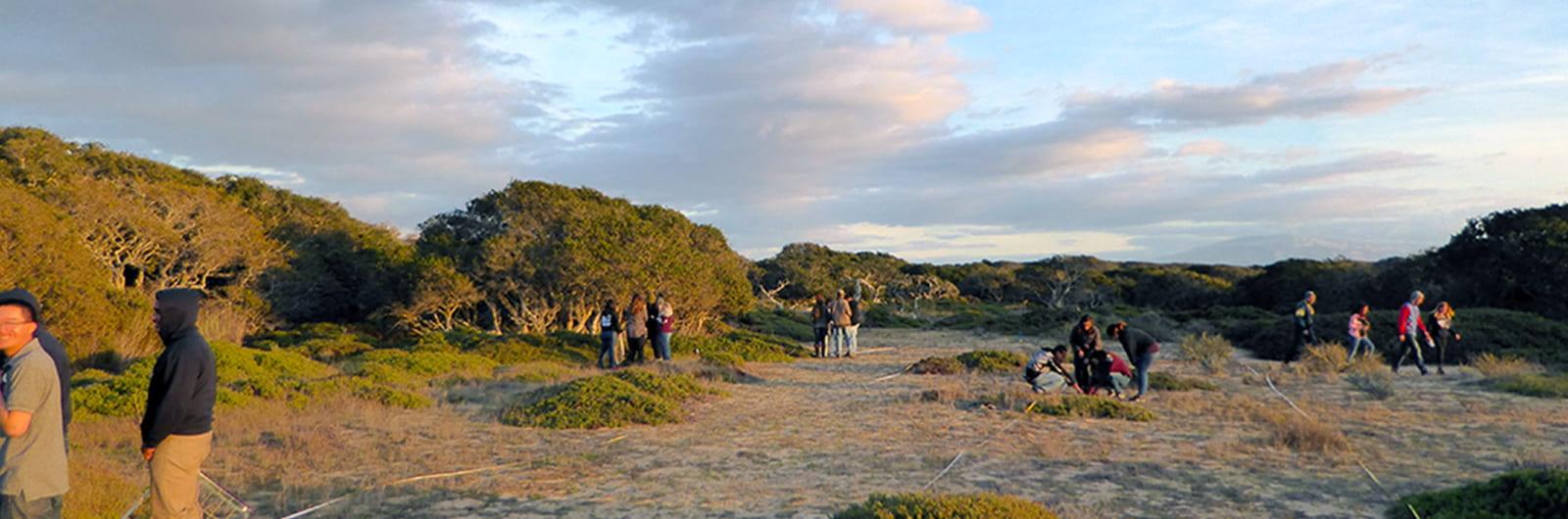 Fort Ord Natural Reserve Internships