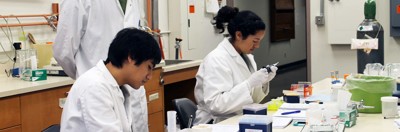 Summer Research Experience (SRE)