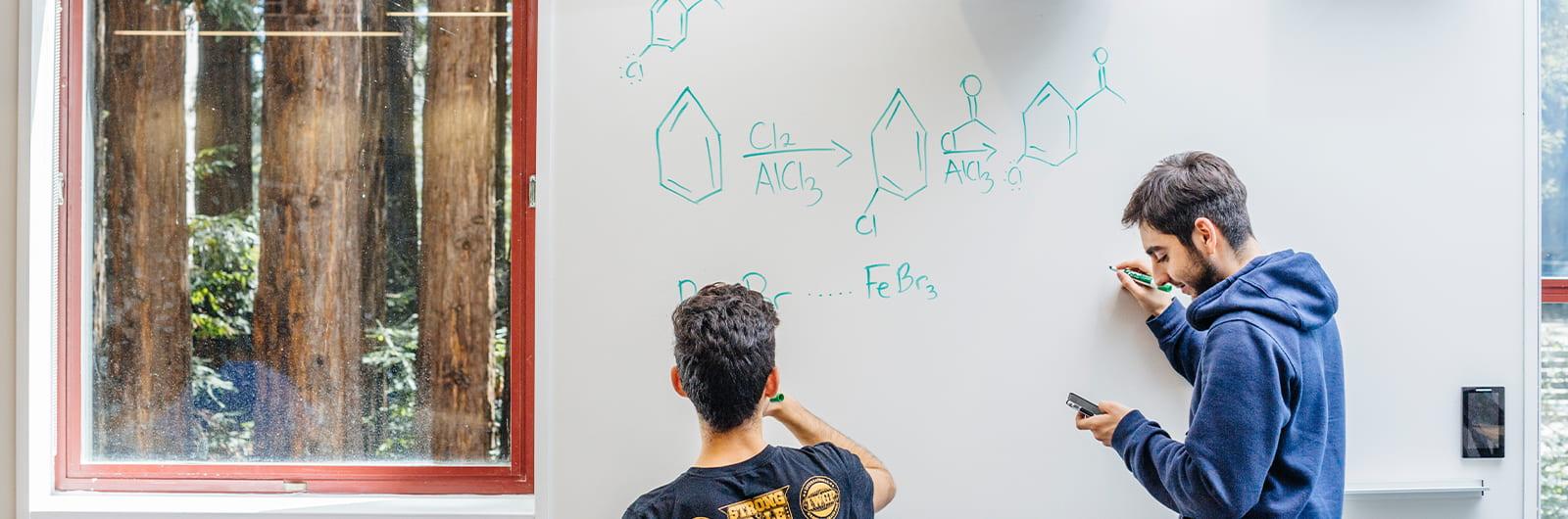 Private Tutoring for Chemistry & Biochemistry