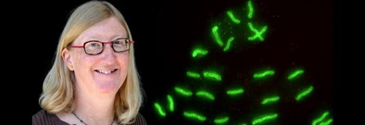 Portrait of UC Santa Cruz Professor of Microbiology & Environmental Toxicology Karen Ottemann
