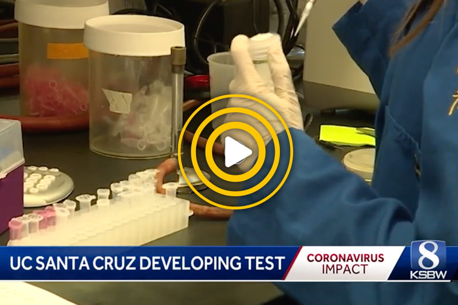 UC Santa Cruz scientists to provide rapid COVID-19 testing by end of month
