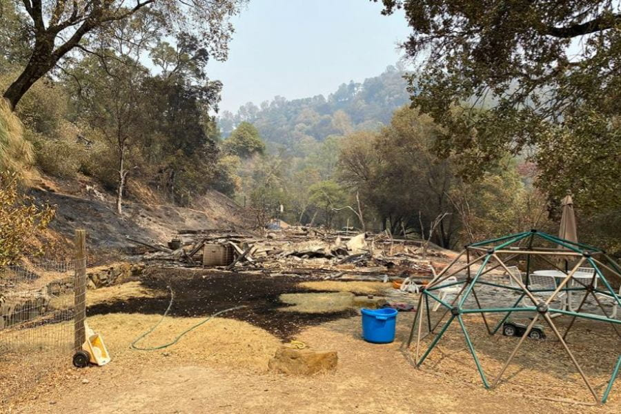 Wildfires burn six UC Natural Reserves; seventh threatened