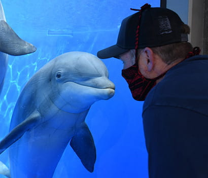 Seymour Marine Discovery Center offers new marine science virtual expeditions