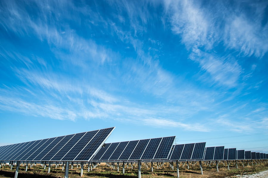 Solar farms are often bad for biodiversity — but they don't have to be