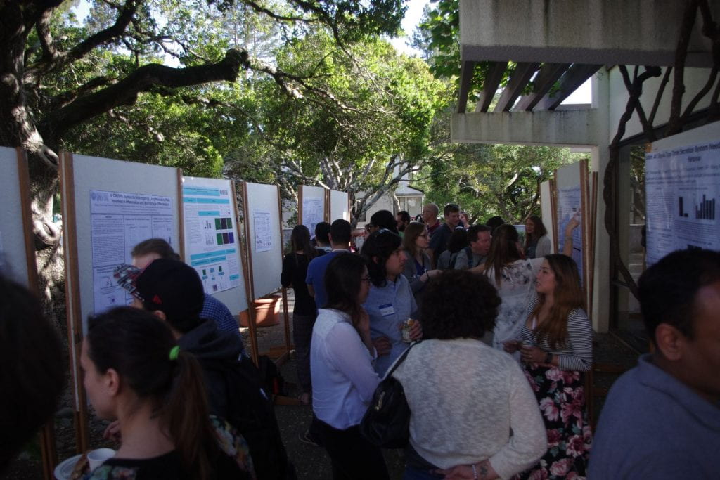 Students gather around academic posters that are being displayed outdoors.