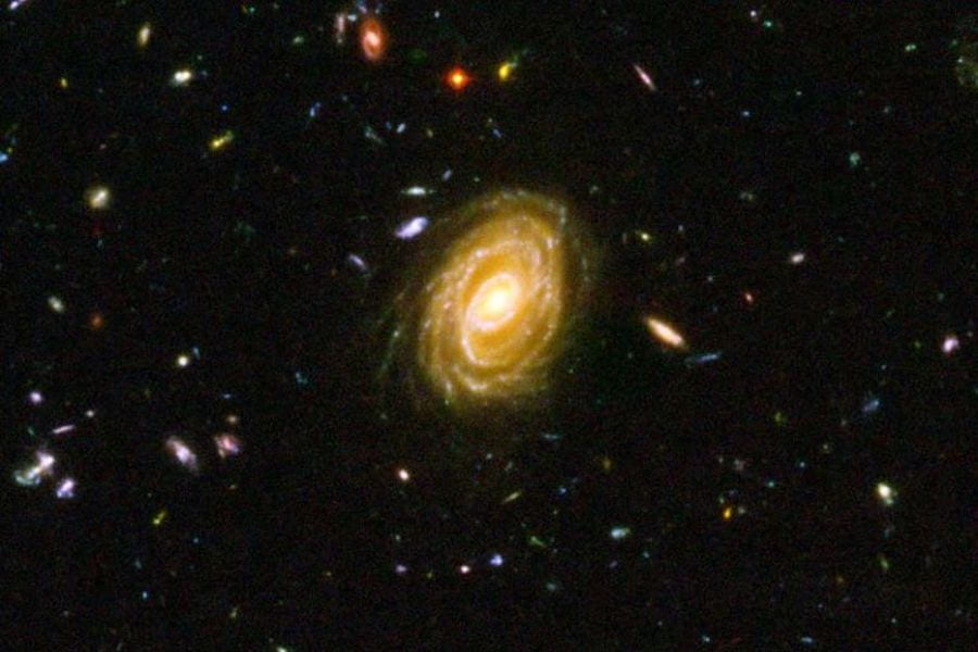 UCR Student Traces Star Formation Rates in Distant Galaxies