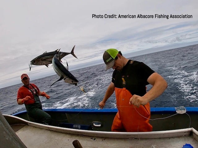 Reconsidering that can of tuna: Albacore helps sustain diverse fisheries livelihoods on the US West Coast