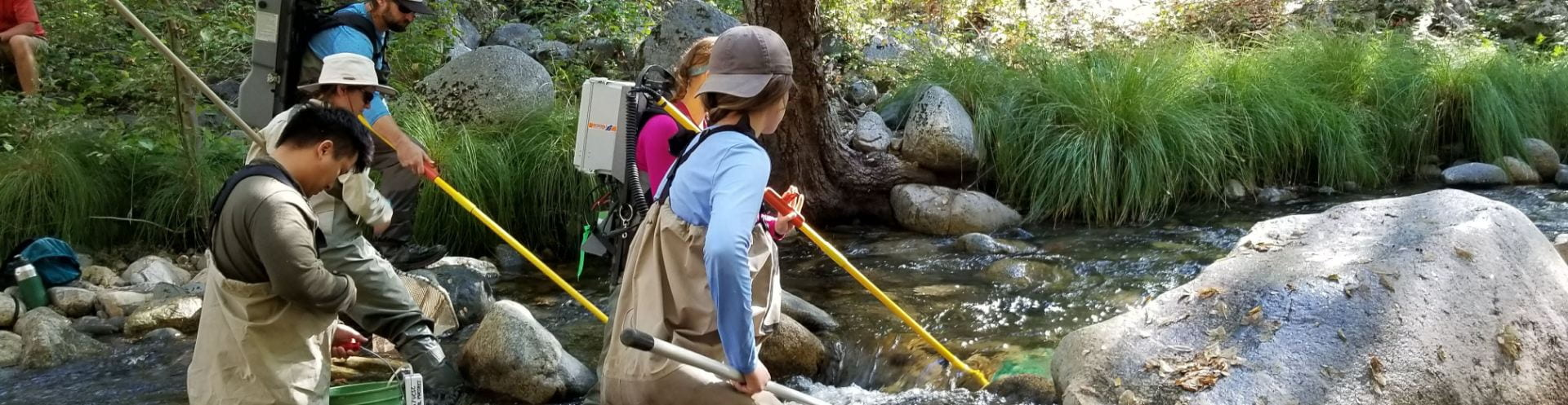 Carmel River Restoration