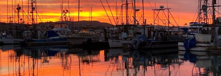 Bodega Bay harbor at sunset