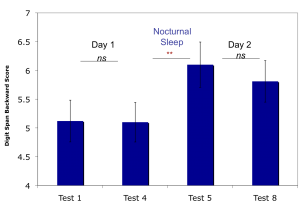 Digit Backwards performance increases with nocturnal sleep, but not repeated daytime testing (Scullin et al., 2012).