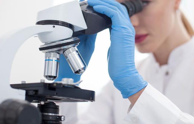 Explore Biological Sciences
