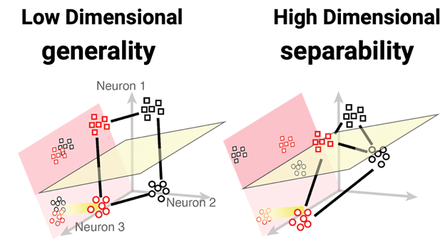Graphical depiction of the difference between generality and separability