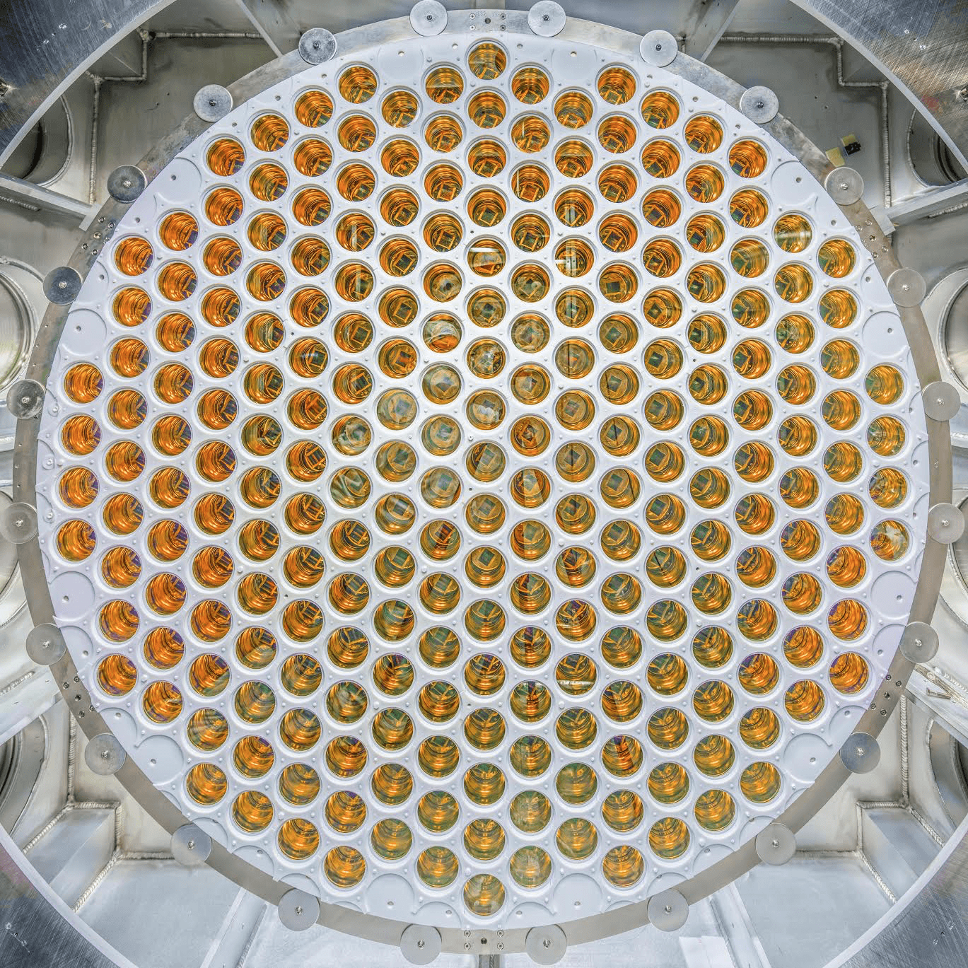 The bottom LZ PMT array with 241 photomultiplier tubes