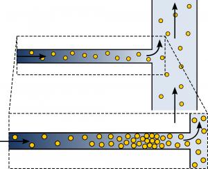 Diffusiophoresis accumulation