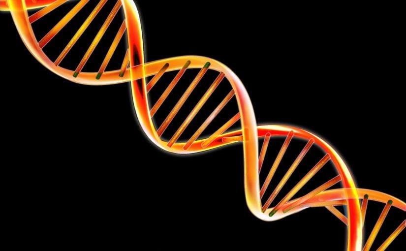 Transmitting Trauma – Genetics