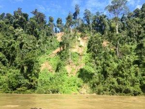 Signs of deforestation along Baram River