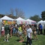 Festival 2014 (7)