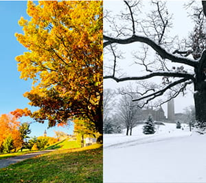 Two photos of the same spot on Libe Slope. One is a fall scene and is a winter scene
