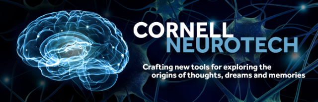 Feature article about Cornell Neurotech