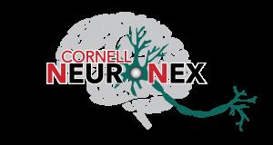 Cornell NeuroNex Technology Research Hub Logo