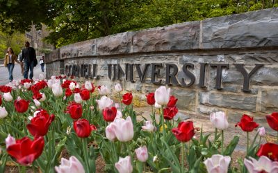 Cornell #11 Among Best Colleges for Start-Ups